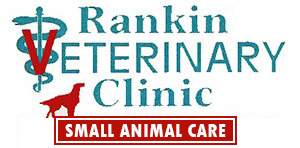 Rankin Veterinary Hospital Retina Logo
